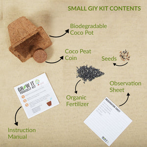 VEGETABLE GARDEN (SMALL GIY KITS - PACK OF 4)