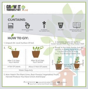 GROW THEM ALL (LARGE GIY KITS - PACK OF 8)