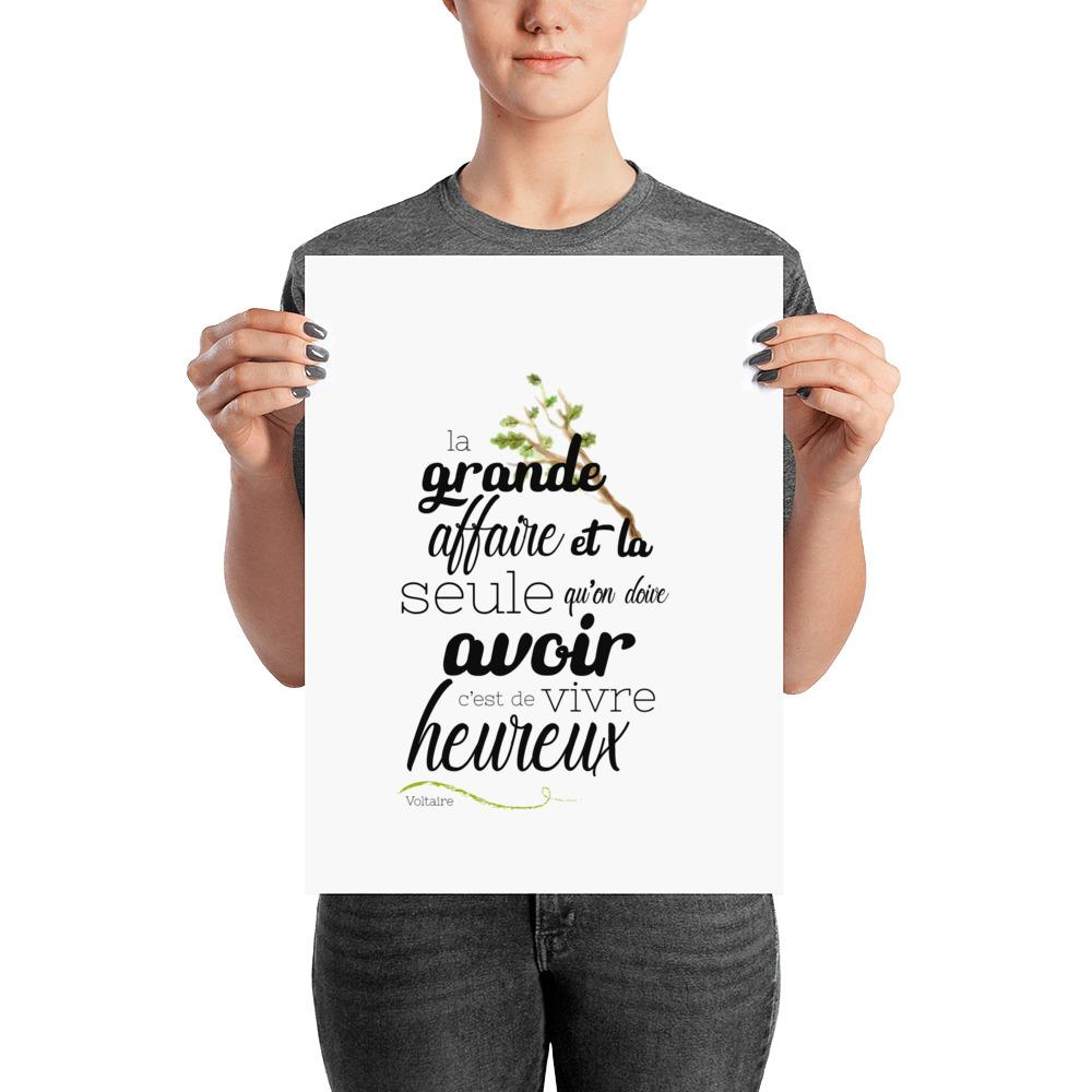 Poster - Voltaire