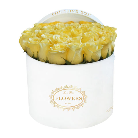 Yellow Roses in Large White Box