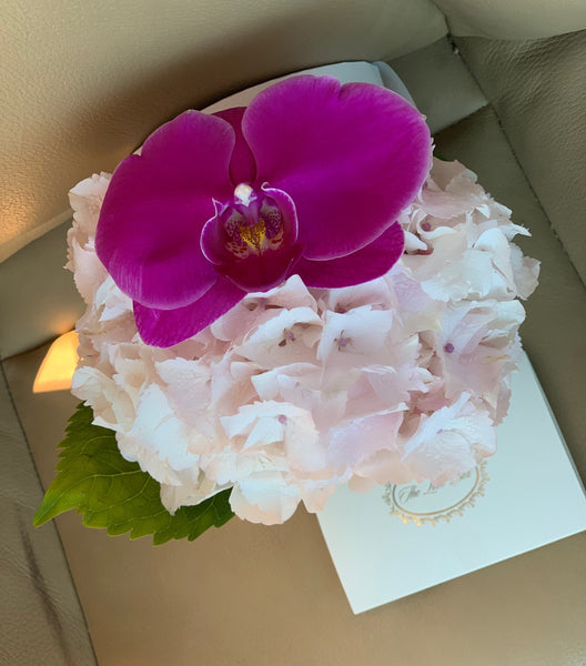 Hydrangea and Orchid Flower in Mini Black Box - The Love Box Flowers