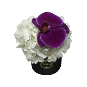 White Hydrangea and Orchid Flower in Mini Black Box - The Love Box Flowers