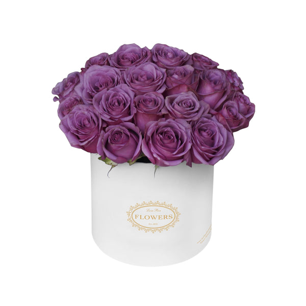Violet Roses in Medium Box