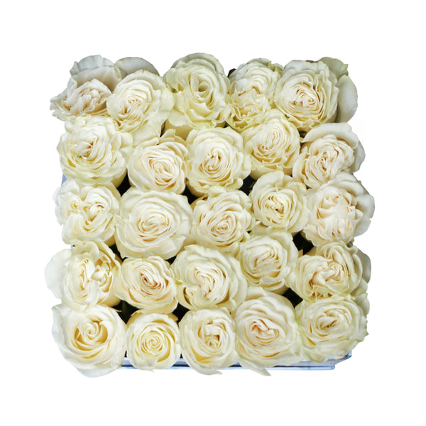 Roses in Medium Square Box