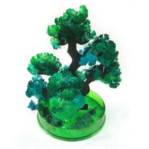 Magic Growing Paper Bonsai Tree - Desk Mess