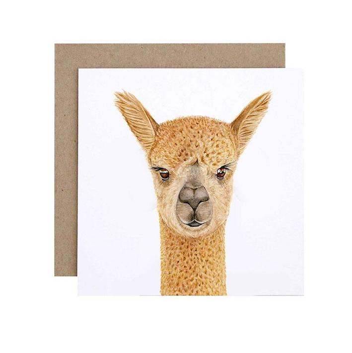Alice the Alpaca Card