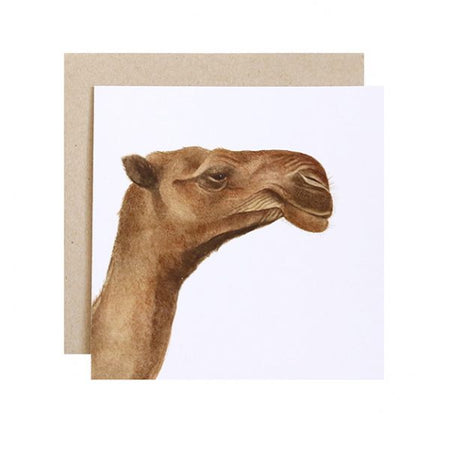 Clarence the Camel Card
