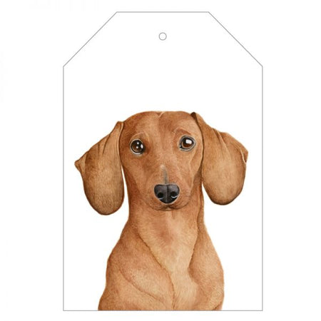 Duke the Dachshund Gift Tag