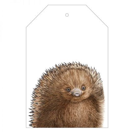 Eddie the Echidna Gift Tag
