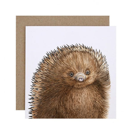Eddie the Echidna Card