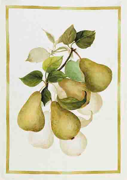 Pears Linen Tea Towel