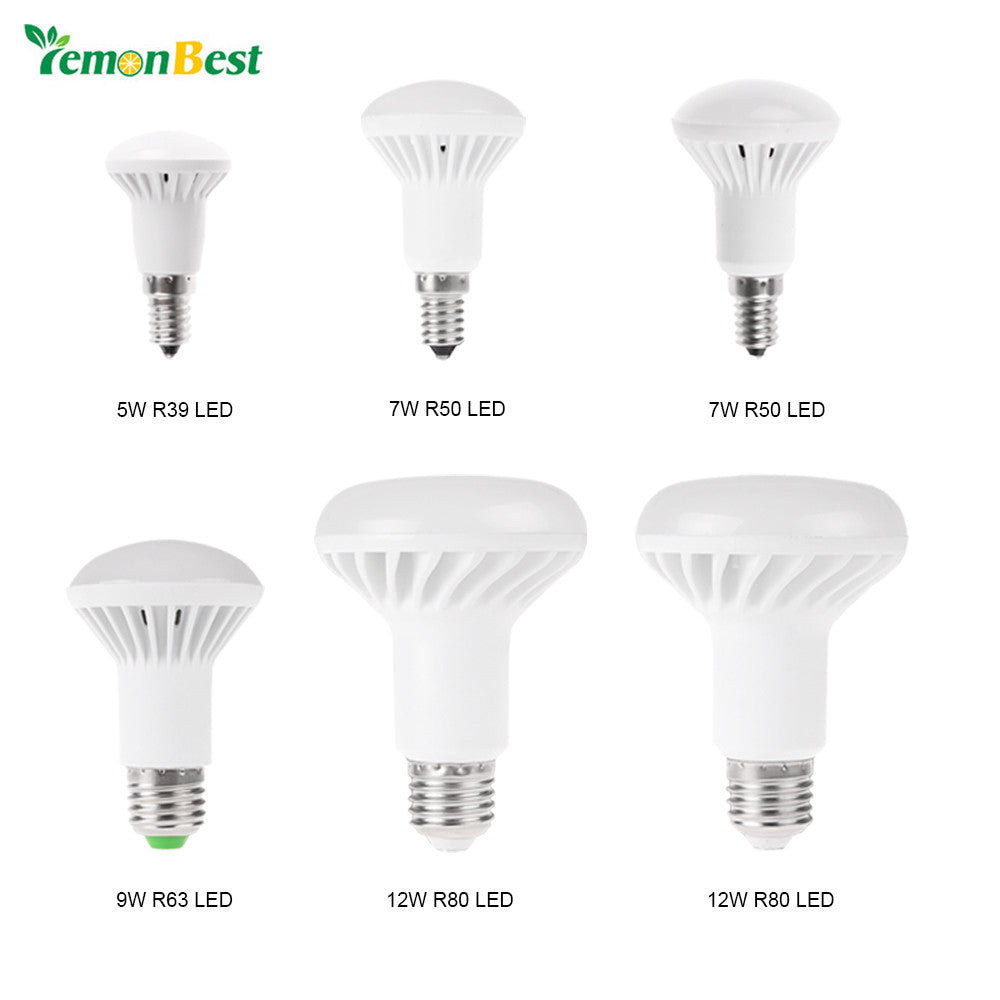 LED Bulb Warm White&Cold White