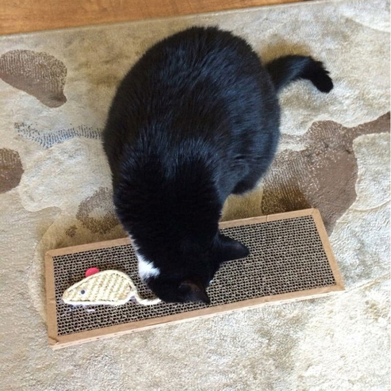 Safe Cat Scratch Pad With Catnip Mayitr Pet Kitten Scratch Board Claws Care Toys New Arrival