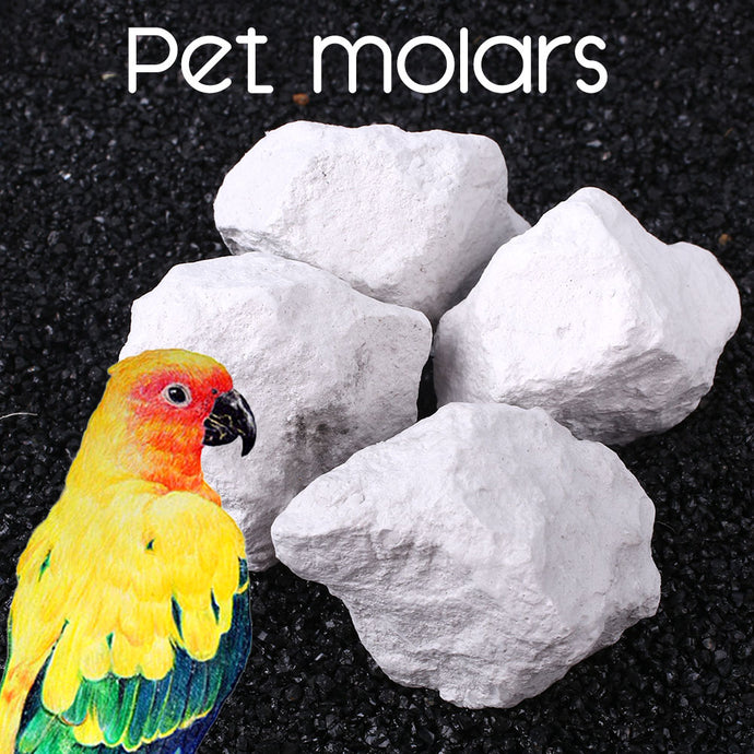 Pet Parrot Hamster Molar Stone Teeth Grinding Products Small Animal Health Care