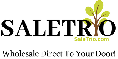 Saletrio Logo with website address and solgan