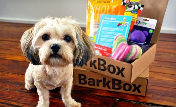 holiday box, dog treats, holiday dog treats, puppy chow, dog snacks, dog cookies
