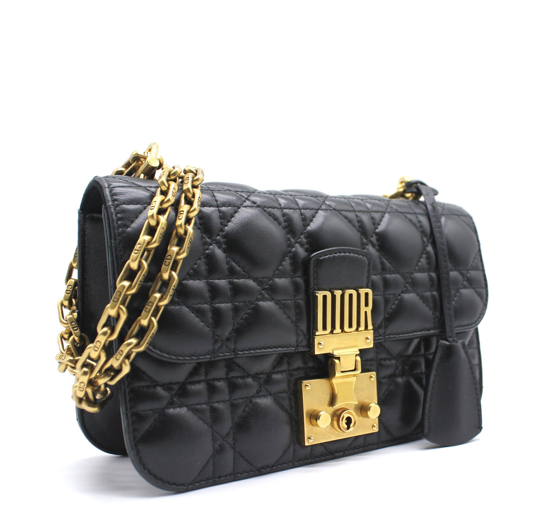 Christian Dior Dioraddcit Small Flap Bag in Black Lambskin