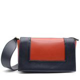 Celine Smooth Calfskin Medium Frame Shoulder Bag