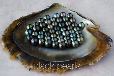 N°511 The Black Pearl  & Coral Reef Galaxy Statement Necklace