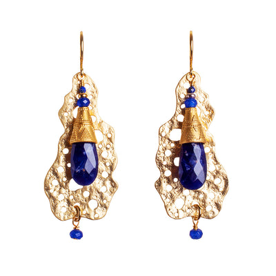 N°677 The Lapis Lazuli & Agate Coral Statement Earrings