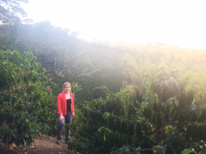 Coffee Farm in Colombia