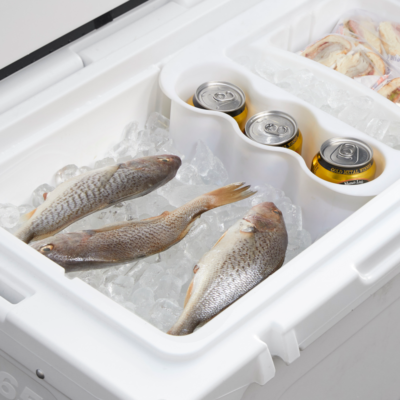 Fish laid over ice in a neatly packed cooler with beer cans stored in an upright beverage holder