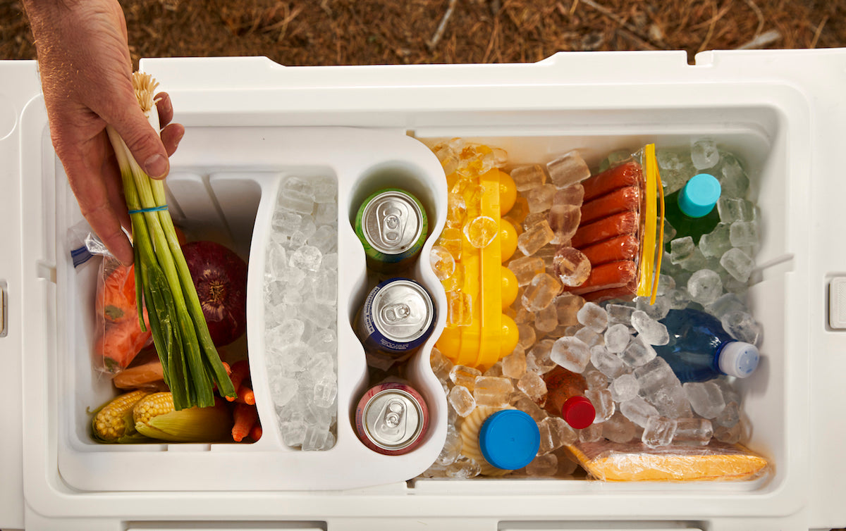 Hand places green onions into neatly packed cooler with various food, soda, and clean ice compartments.