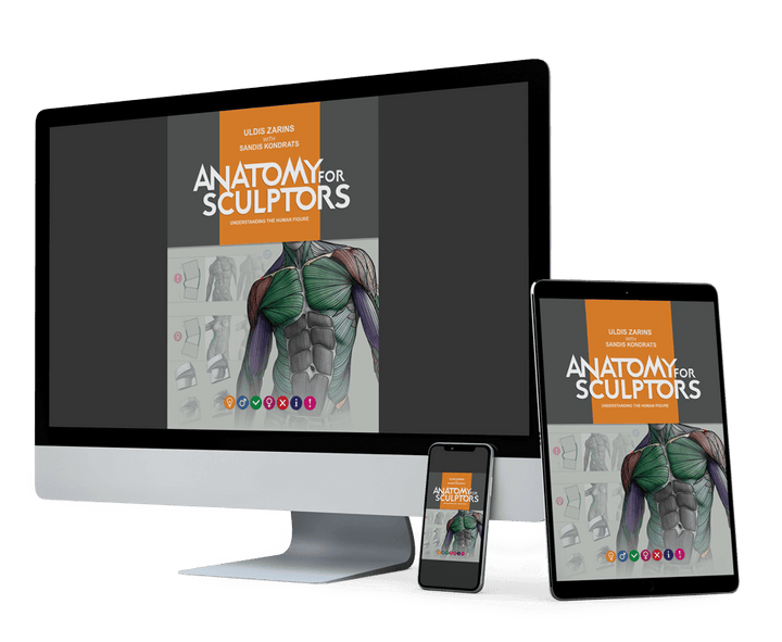 Anatomy for Sculptors: Understanding the Human Figure books cover of a PDF (e-book) version mockup