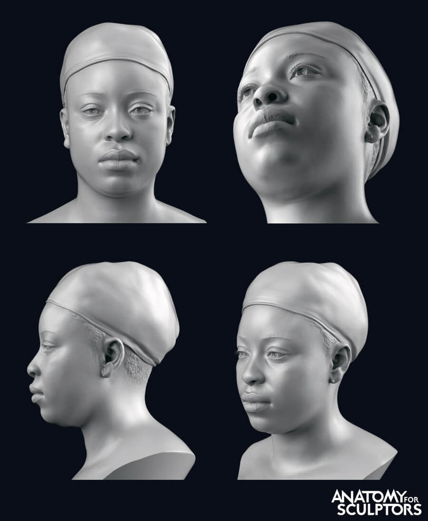 female head and neck scans from multiple angles anatomy for sculptors