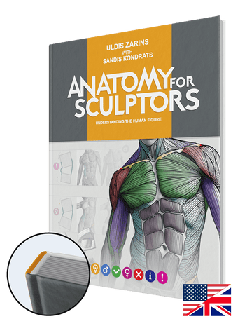 Anatomy For Sculptors: Understanding the Human Figure - Hardcover (English)