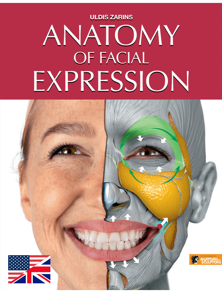 Anatomy of Facial Expressions - PDF (e-book)