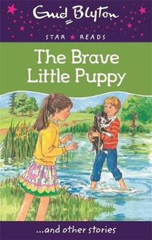 The Brave Little Puppy : Star Reads Series 7