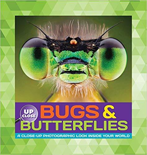 Up Close Bugs & Butterflies: A Close-Up Photographic Look Inside Your World