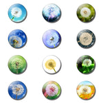 12pcs Floral Dandelion 25 MM Fridge Magnet