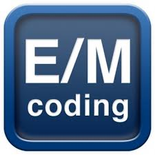 FEMC-Fellowship in Evaluation and Management Coding-FEMC
