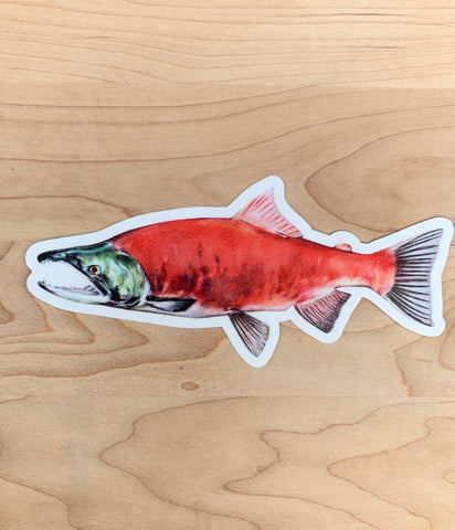 Kokanee Salmon - Idaho Artist Sticker