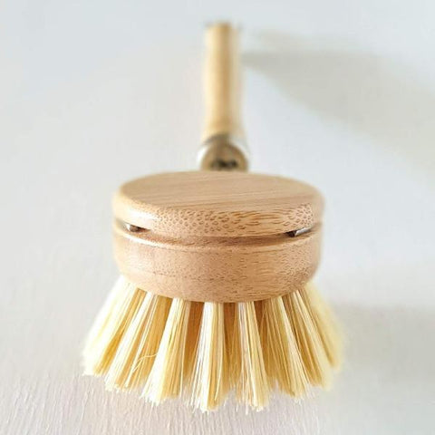 Agave_and_white_teak_dish_brush_no_tox_life