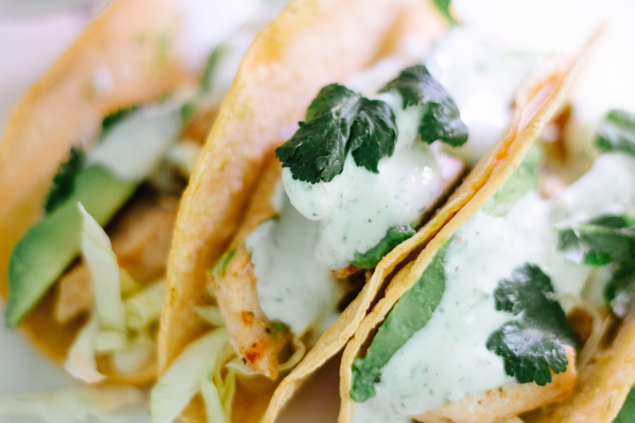 Chicken Tacos with Creamy Cilantro Lime Sauce