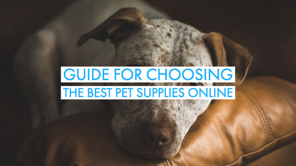 Best Pet Supplies Online