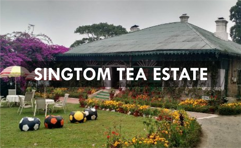 Singtom Tea Estate