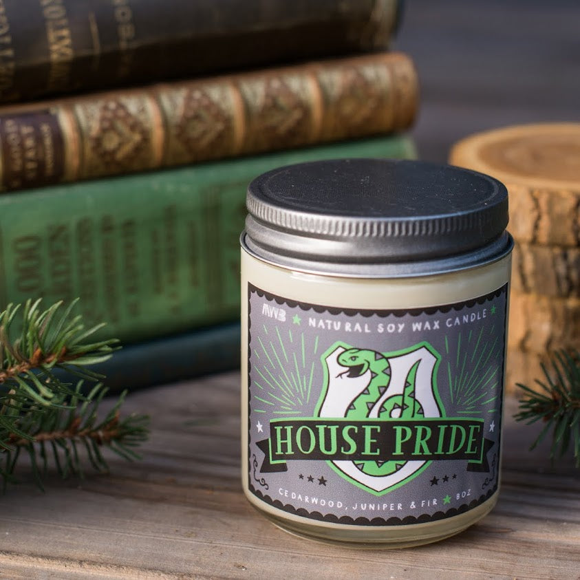 house-pride-ambition-slytherin-natural-soy-candle-my-weekend-is-booked-harry-potter-gift-book-candle