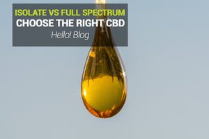 CBD Isolates Vs Full Spectrum CBD