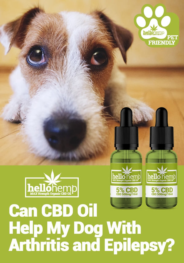 HELLO HEMP CBD OIL FOR DOGS - Arthritis