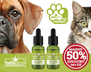 HELLO HEMP CBD OIL FOR PETS