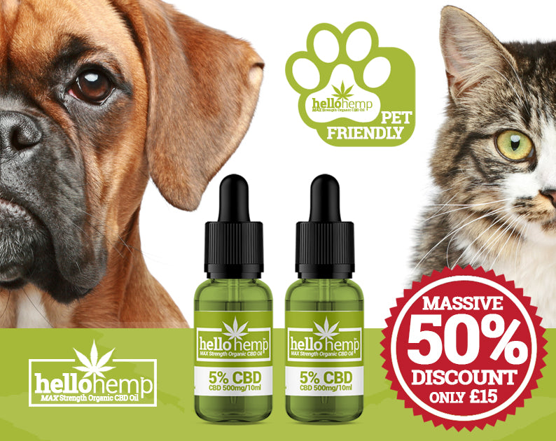 HELLO HEMP CBD OIL FOR DOGS AND CATS