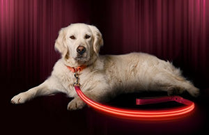 LED Dog Leash - USB Rechargeable, 6 Colours
