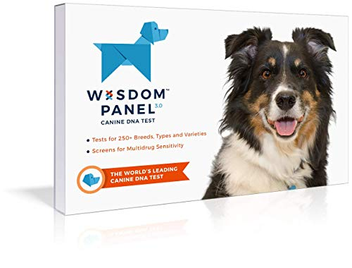 Dog DNA Test Kit | Canine Genetic Ancestry Test for Breed Identification