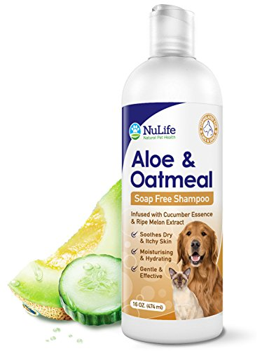 Oatmeal Shampoo for Itchy Dogs With Soothing Aloe Vera, with Money-Back Guarantee