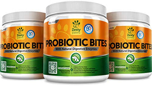 Probiotic for Dogs - With Prebiotics and Natural Digestive Enzymes, 90 Chewable Treats
