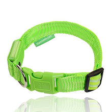 LED Dog Collar - USB Rechargeable - Available in 6 Colours & Sizes